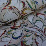 Feuillage Multicolore