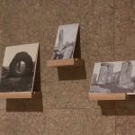 charlotte moth , Vitrine, détail