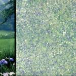 L'été frais dans le champs des iris