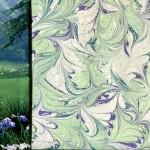 L'été frais des iris